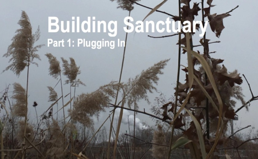 Building Sanctuary: Part One
